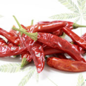 study:-chili-peppers-and-cannabis-could-be-the-answer-to-gut-disorders