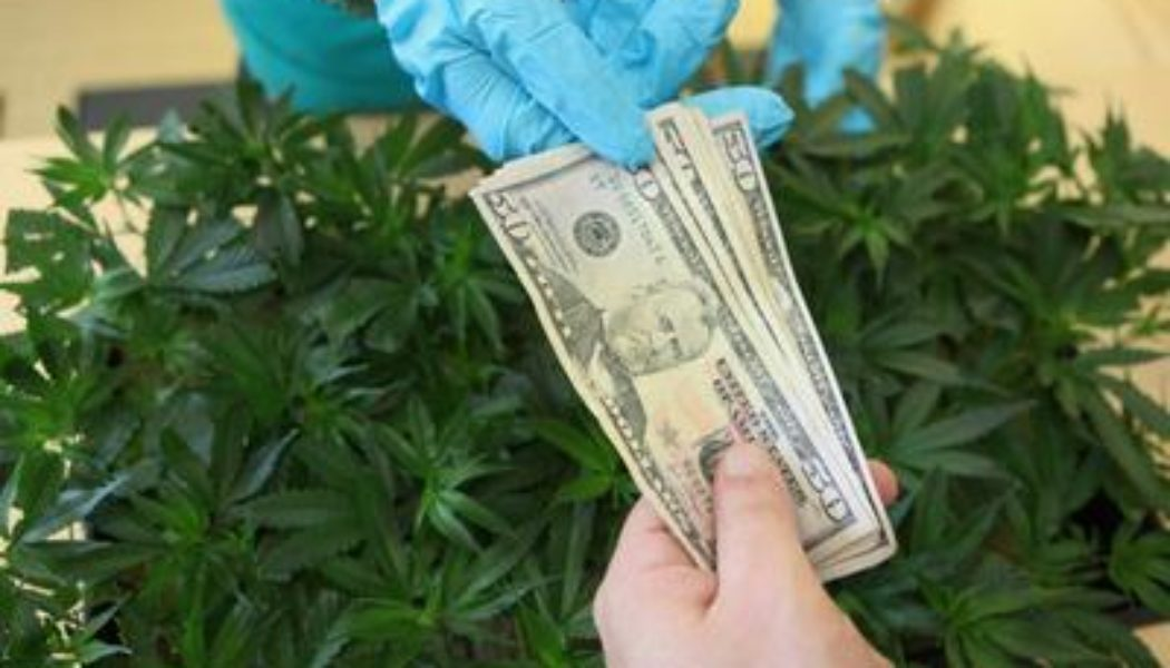 police-jail-woman-who-paid-$5,000-bail-with-marijuana-scented-cash