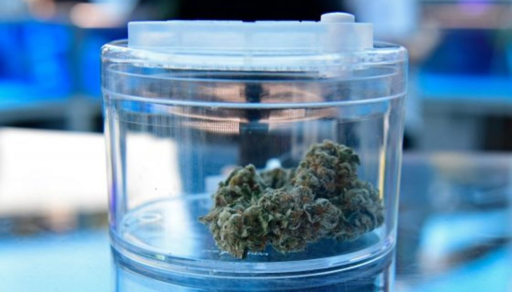 coding-and-cannabis:-santa-clara-county-to-expunge-thousands-of-marijuana-convictions
