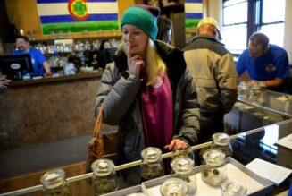 colorado-marijuana-sales-blow-past-$200-million-in-july