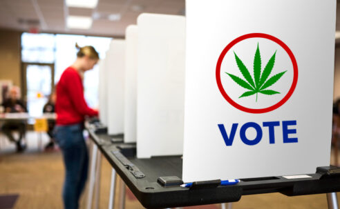 marijuana-legalization-is-a-winner-at-the-polls