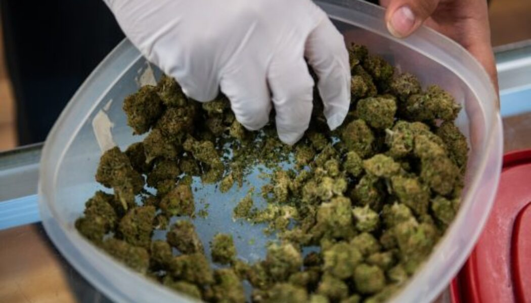 colorado-weed-sales-set-to-crush-annual-record,-with-another-$200-million-month-in-september