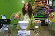 staff-favorites:-dank-dispensary-is-the-only-place-i'm-visiting-during-420-week