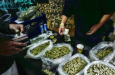 cannabis-industry-says-access-to-banking-services-'can't-happen-soon-enough'