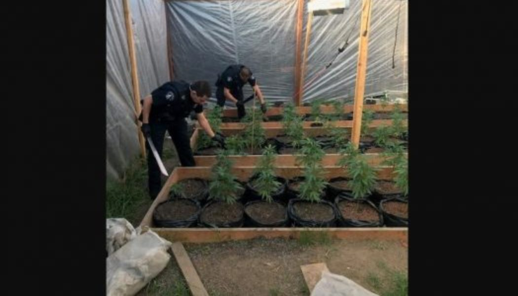police-arrest-2-bay-area-men-suspected-of-selling-marijuana-to-high-school-students-in-marin