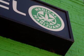 guest-commentary:-the-use-of-cannabis-in-the-united-states-should-be-decriminalized