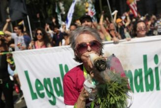 pride-month:-celebrating-ties-between-california's-cannabis-and-lgbtq-movements