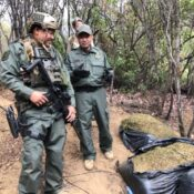 illegal-marijuana-farms-in-orange-county-show-how-toxic-danger-is-spread-through-national-forests